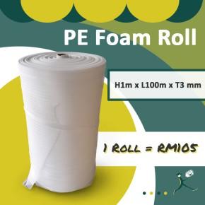 PE Foam Roll T3